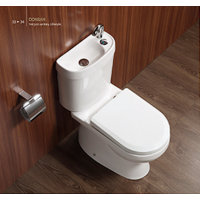 Toilet Basin Combo Combined - Tapware included