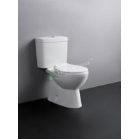 Toilet Suite - Two Piece A3965 S-Pan