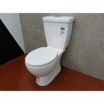 Toilet Suite- Two Piece A3965 S-Pan