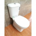 Toilet Suite- Two Piece A3969 S-Pan