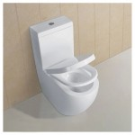 Toilet Suite - BTW Lydon A3970 S/P Pan