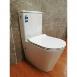 Toilet Suite - BTW A3314B S/P Pan