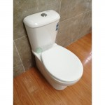 Toilet Suite - BTW A3969B S/P Pan