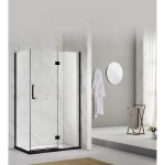 Shower Glass - Stream Series Swing Door (870x1950mm) With Black Color Frame
