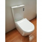 Toilet Suite - BTW A3988B S/P Pan